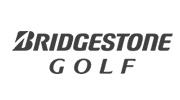 Golfpro Berlin Bridgestone